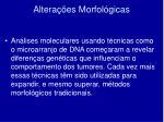 altera es morfol gicas2