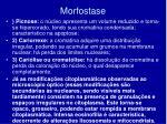 morfostase