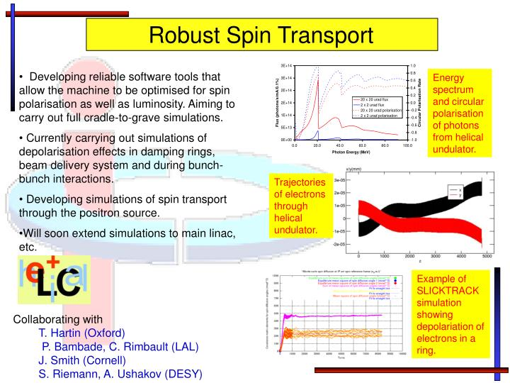 Robust Spin Transport