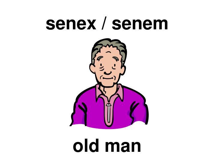 senex / senem
