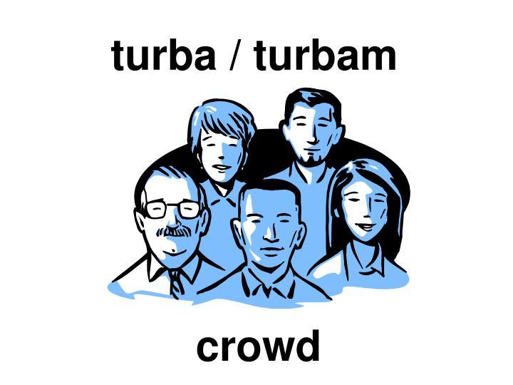turba / turbam