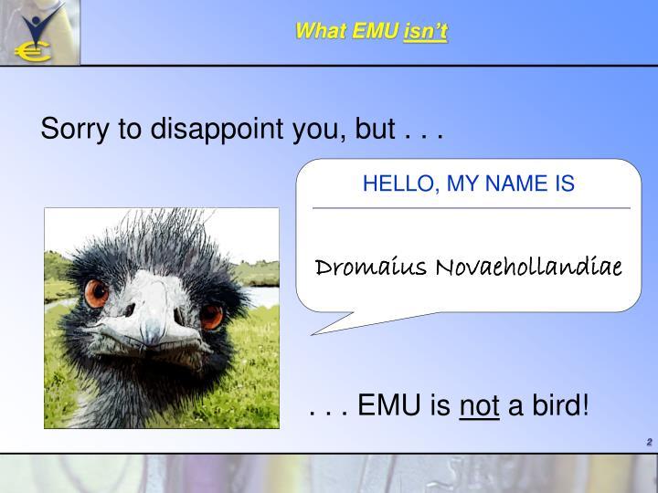 What EMU