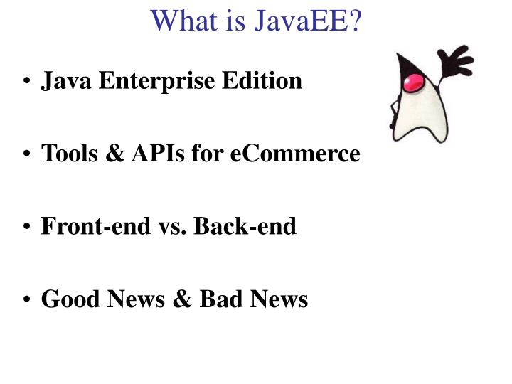 What is JavaEE?