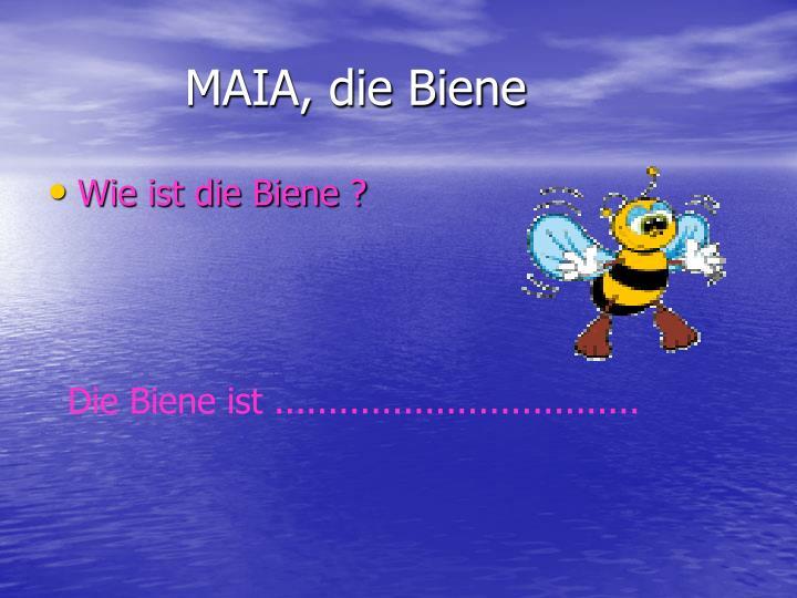 MAIA, die Biene