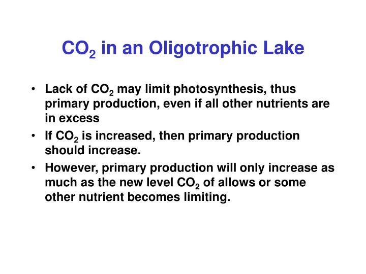 Co 2 in an oligotrophic lake