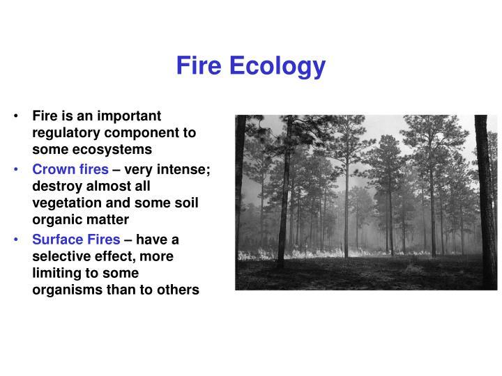 Fire Ecology