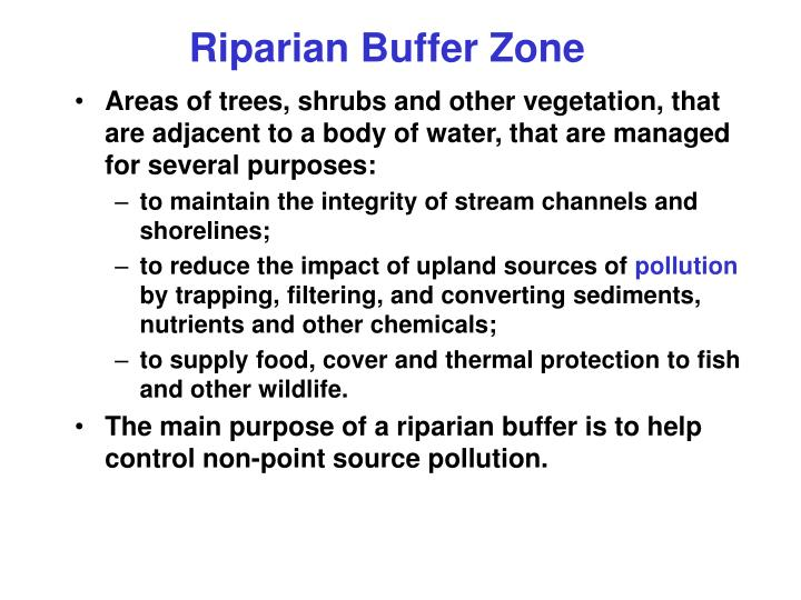 Riparian Buffer Zone