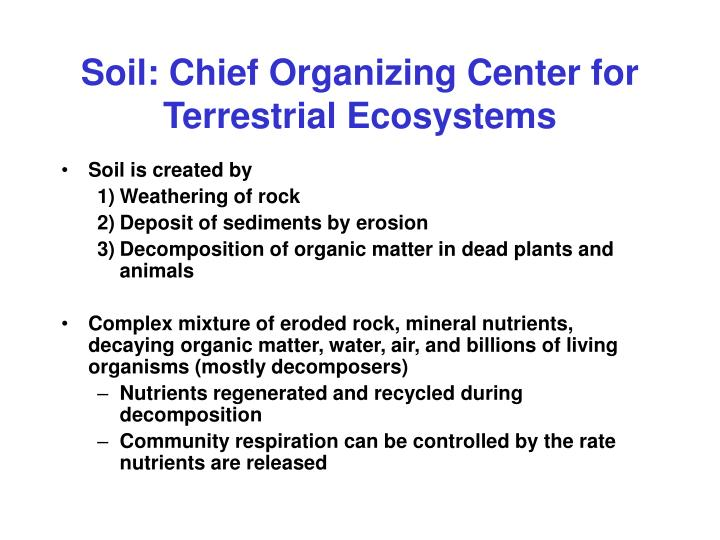 Soil: Chief Organizing Center for Terrestrial Ecosystems