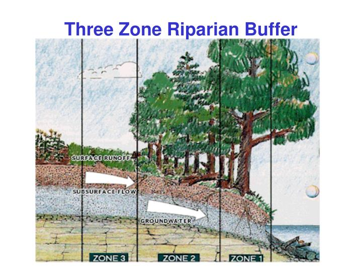 Three Zone Riparian Buffer