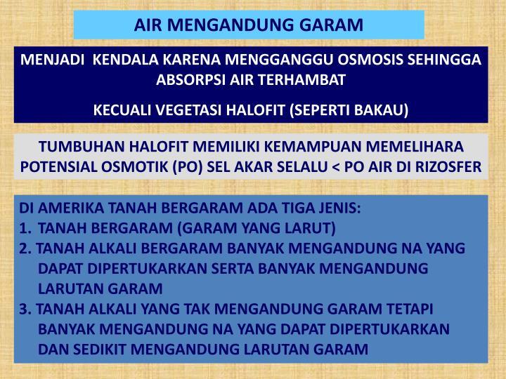 AIR MENGANDUNG GARAM