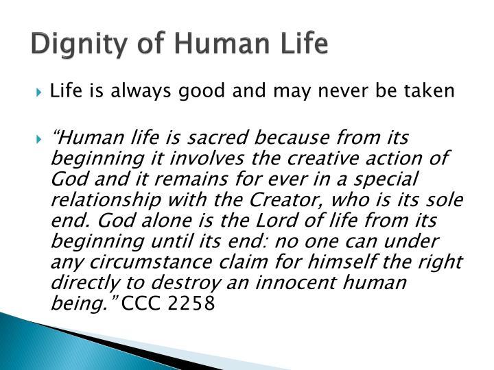 Dignity of Human Life