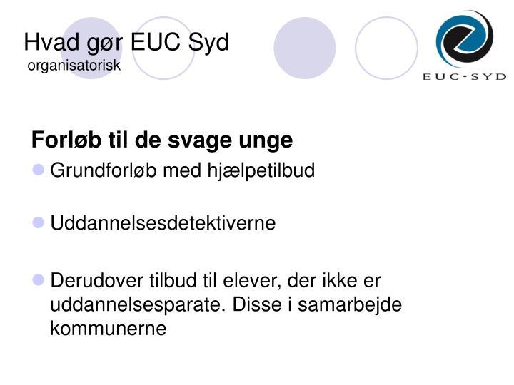 Hvad gør EUC Syd