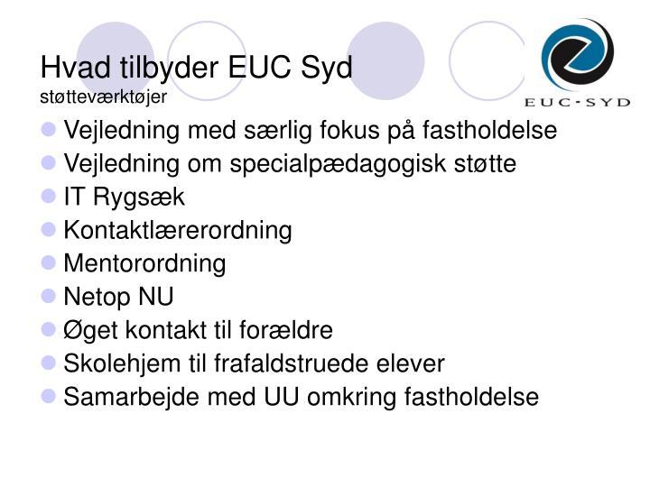 Hvad tilbyder EUC Syd