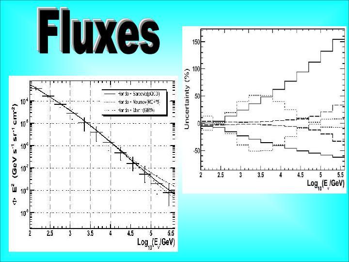 Fluxes