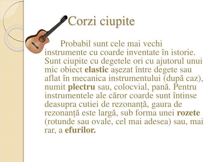 Corzi