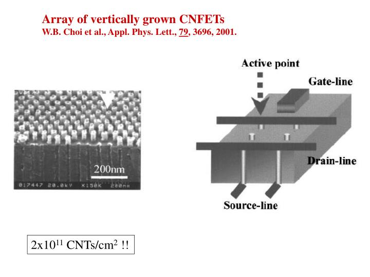 Array of vertically grown CNFETs