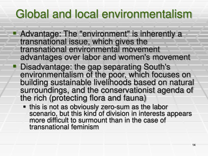 Global and local environmentalism