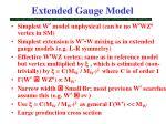 extended gauge model