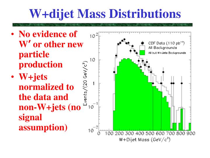 W+dijet Mass Distributions