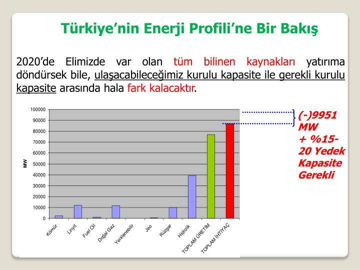 Türkiye'nin Enerji Profili'ne Bir Bakış