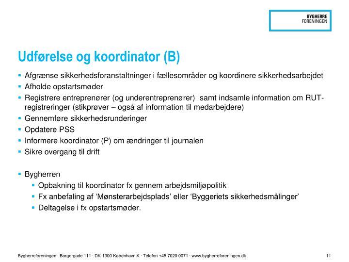 Udførelse og koordinator (B)