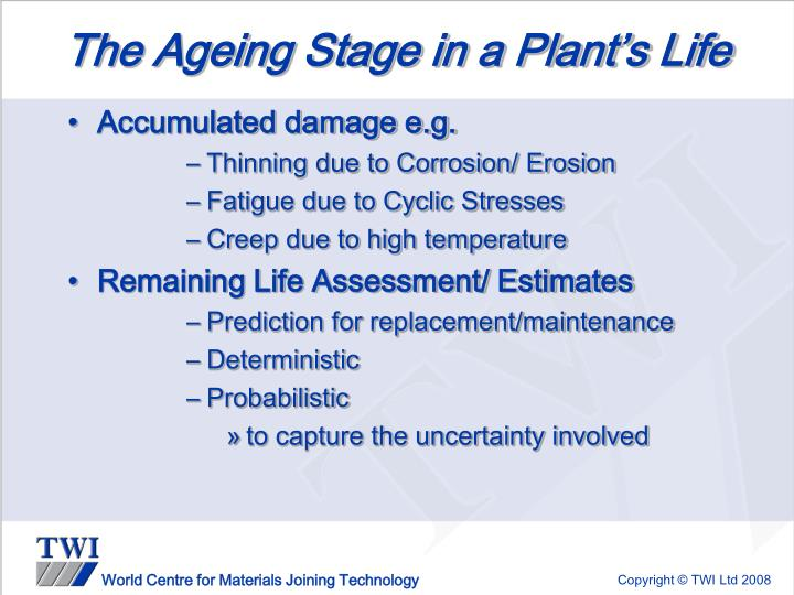 The Ageing Stage in a Plant's Life