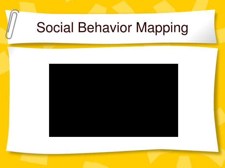 Social Behavior Mapping