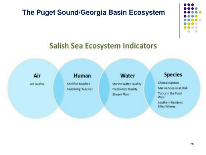 The Puget Sound/Georgia Basin Ecosystem