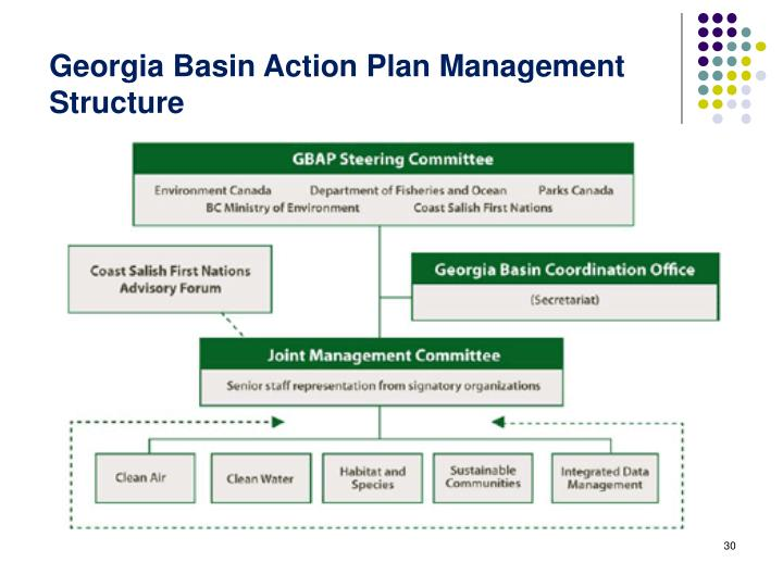 Georgia Basin Action Plan Management Structure