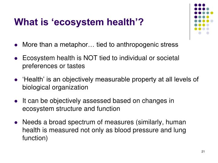 What is 'ecosystem health'?