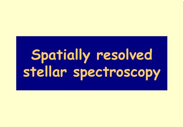 Spatially resolved stellar spectroscopy
