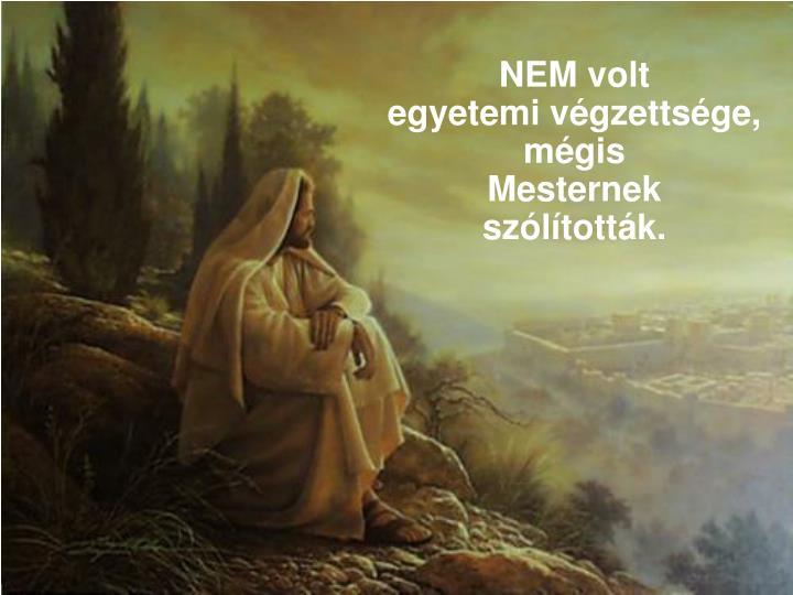 NEM volt