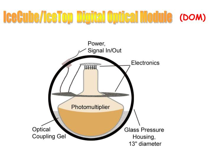 IceCube/IceTop  Digital Optical Module