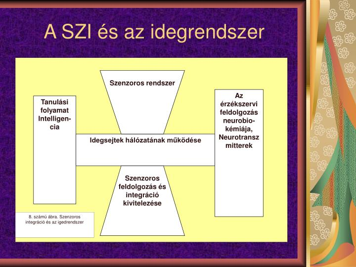 Szenzoros rendszer
