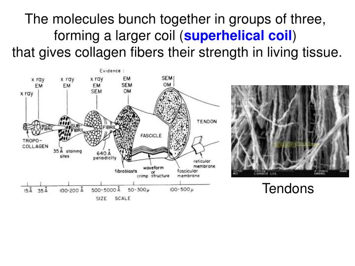 The molecules bunch together in groups of three,