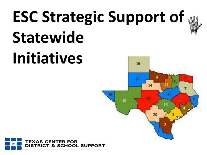 ESC Strategic Support of Statewide