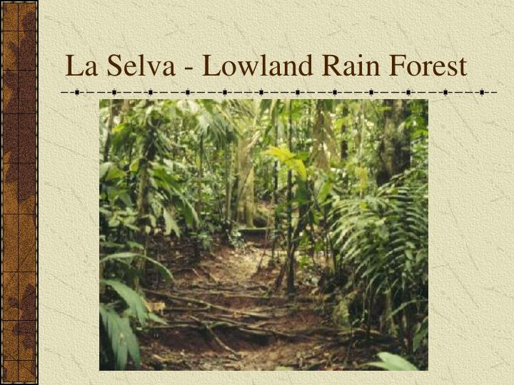 La Selva - Lowland Rain Forest