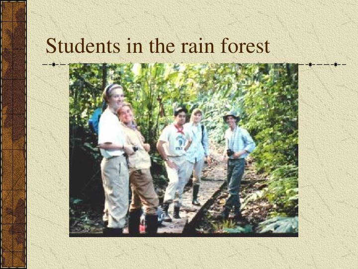 Students in the rain forest
