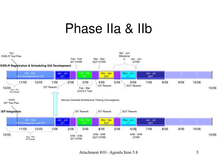 Phase IIa & IIb