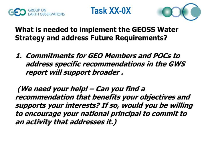 What is needed to implement the GEOSS Water Strategy and address Future Requirements?