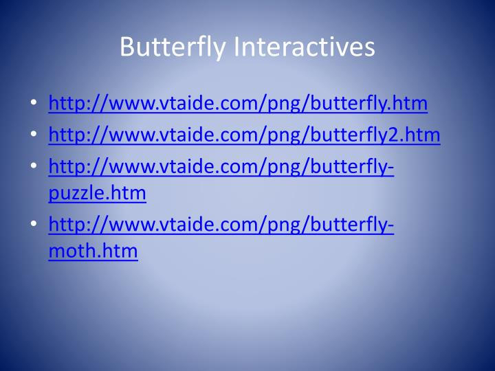 Butterfly Interactives