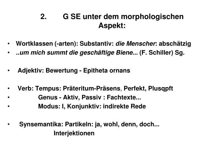 2.G SE unter dem morphologischen
