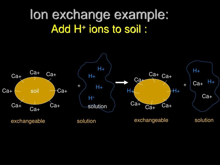 Ion exchange example: