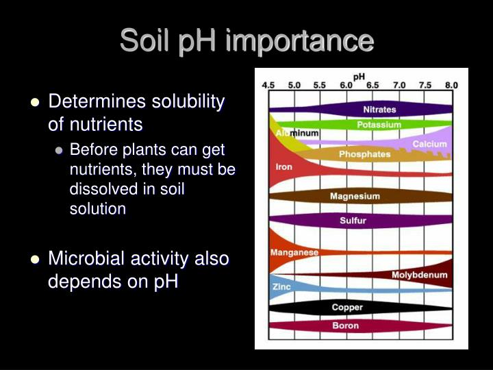 Soil pH importance