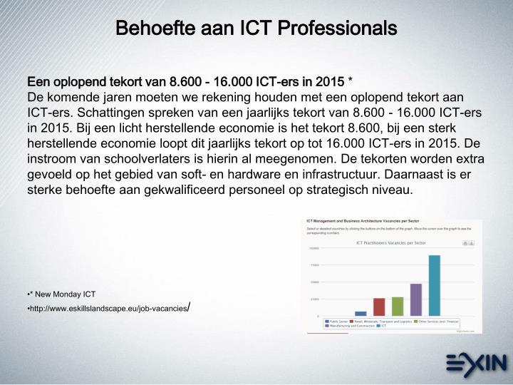 Behoefte aan ICT Professionals