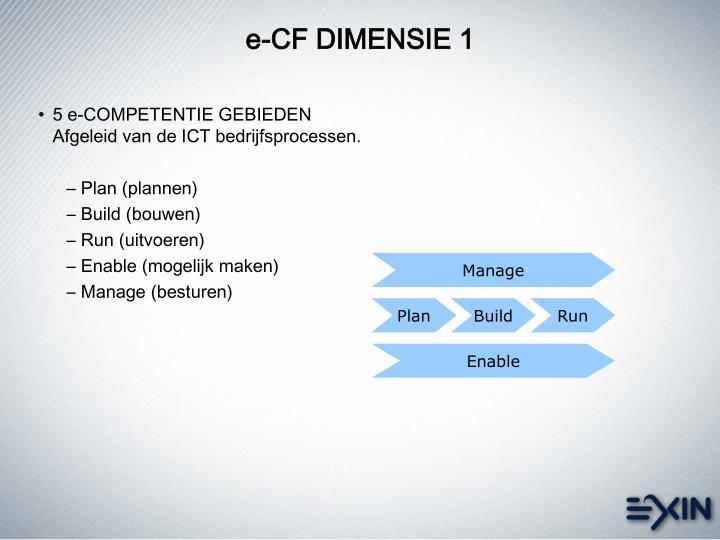 e-CF DIMENSIE 1