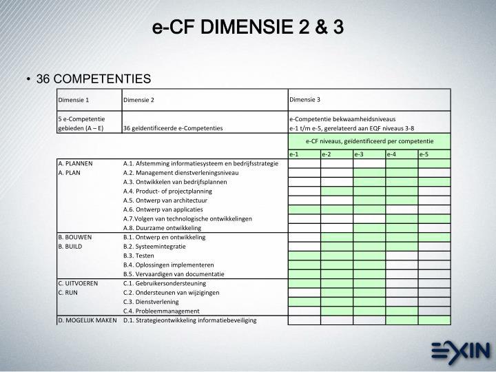 e-CF DIMENSIE 2 & 3