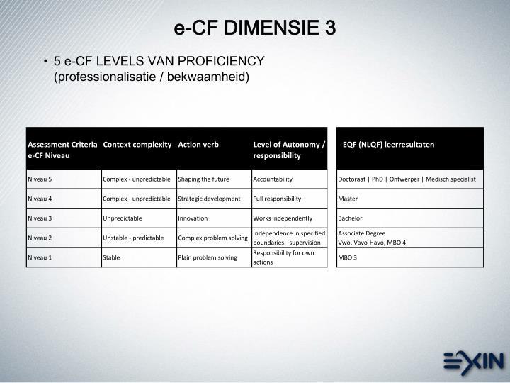 e-CF DIMENSIE 3