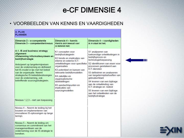 e-CF DIMENSIE 4