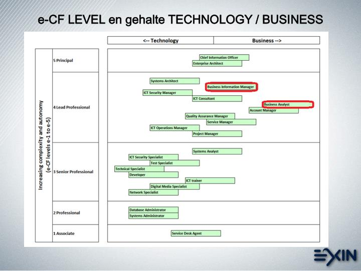 e-CF LEVEL en gehalte TECHNOLOGY / BUSINESS